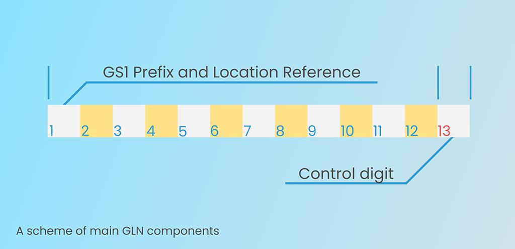 A Scheme of main GLN-13 components
